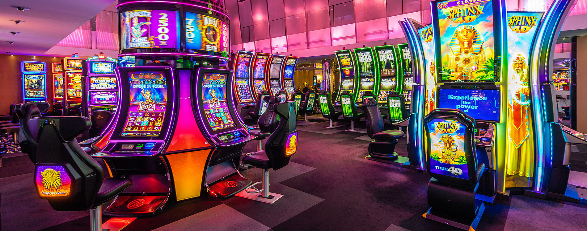 Decide to start your gaming process as the casino games are highly secure.